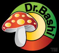 dr.bashi_